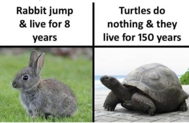 Las tortugas viven 150 tocándose los cojonazos