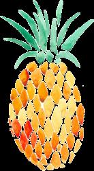 pineapple transparent redbubble stickers watercolor sticker google ananas artsy edit flamingo festa pizza flowers jacqueline express drawing collage profilja gemerkt