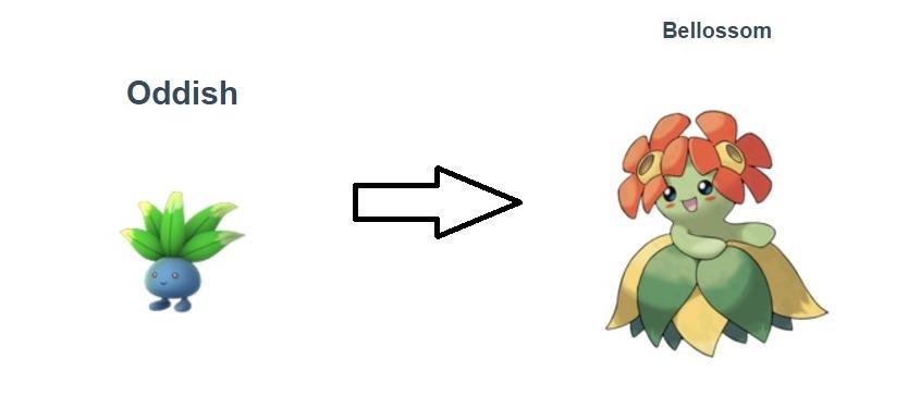 《Pokemon Go》這十隻寵物在第二代中將有新進化, 橡實果,但最緊要夠糖,更是威力驚人,要做好準備了   Press Start   數碼講 - fanpiece