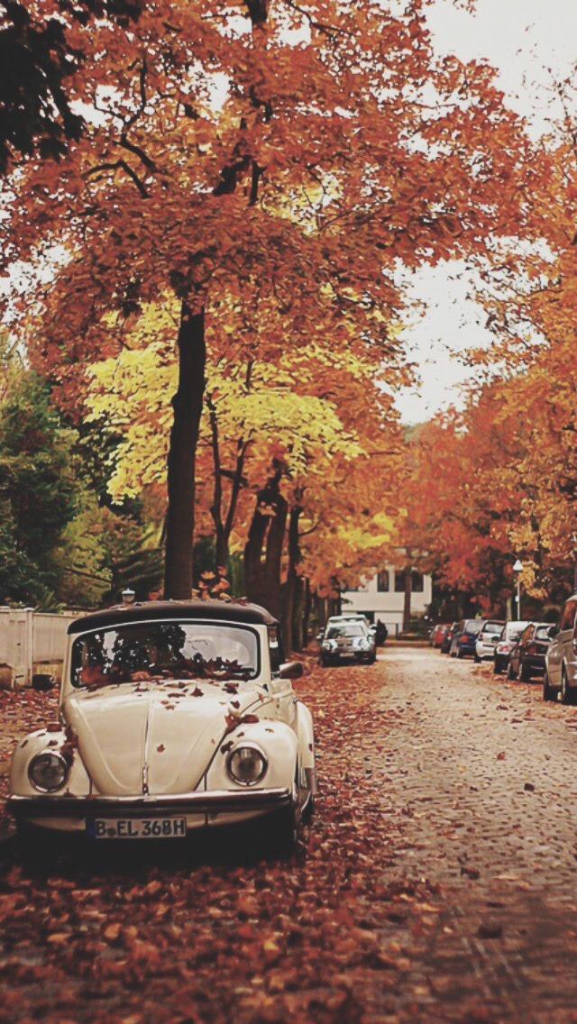 Desktop Wallpaper Pinterest Fall October