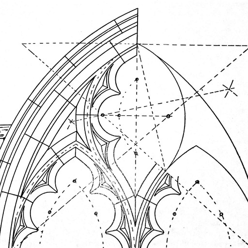ARCHITECTURAL BROMELIADS — more Jedi Service Corps stuff