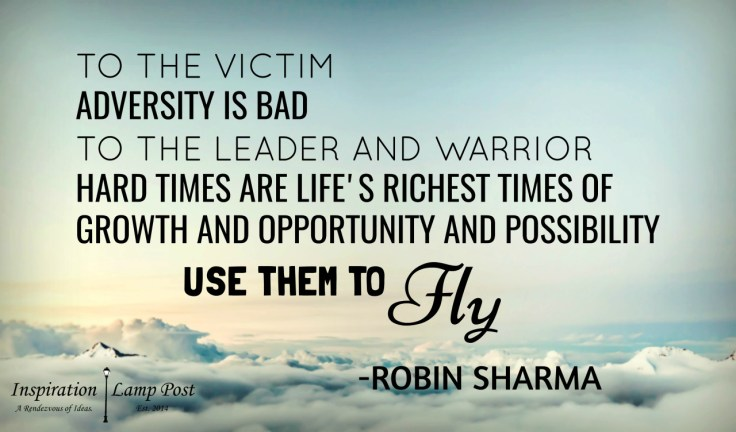 """Inspiration Lamp Post — """"To the victim, adversity is bad. To the ..."""