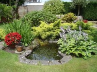 Small Backyard Garden Mini Pond Design  Gardening