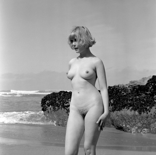 "around-here: "" Wendy James from an original negative, 1966 by Harrison Marks, Bedruthen beach, Cornwall, England. via /r/OldSchoolCoolNSFW http://ift.tt/1NRGr87 "" English flower."