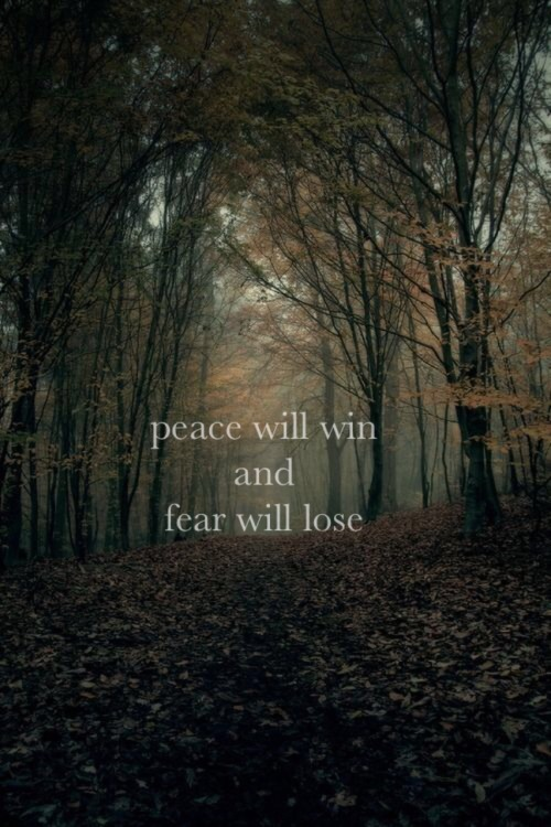 Fall Leaves Hd Wallpapers 1080p Lyric Quotes On Tumblr