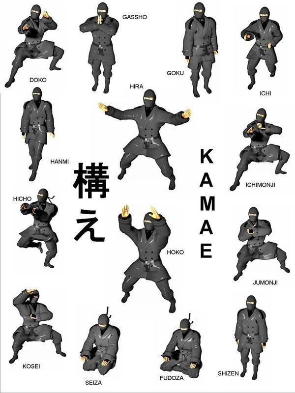 Source: the-ninja-a-go-go The NINJA a Go Go ninjutsu ninja