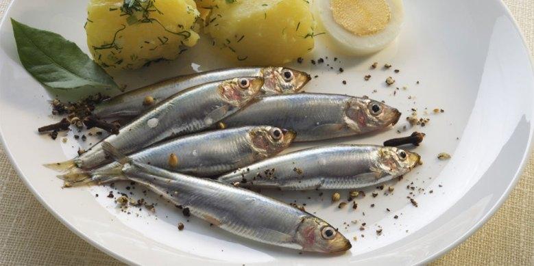 Büyük balıklara göre küçük balıklar daha az civa ihtiva ederler. Civa içeriği yönünden değerlendirdiğimizde küçük balıklar büyüklere göre daha avantajlıdır.