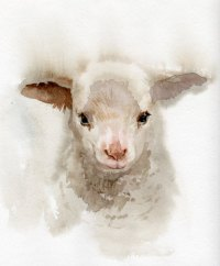 A. Verbrugge Paintings | Little Lamb, watercolor painting ...