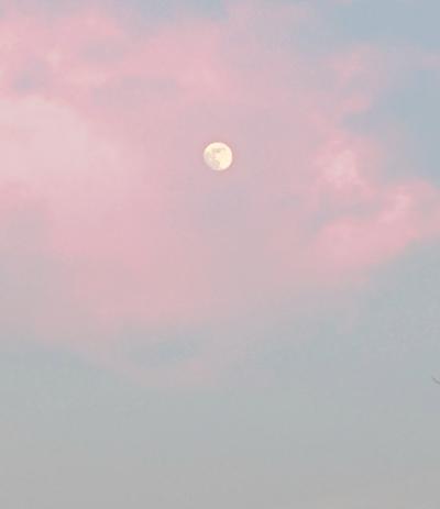 soft aesthetic tumblr