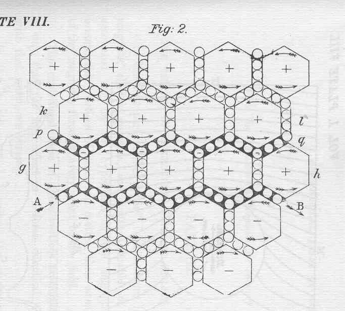4 gravitons — Nonperturbative Methods for Conformal