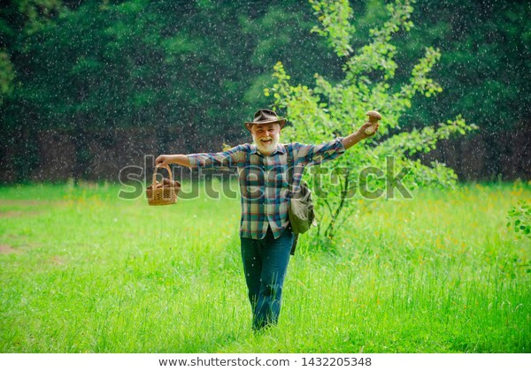Old bearded man holding a mushroom in one hand and a basket of mushrooms in another, caught in a sun shower.