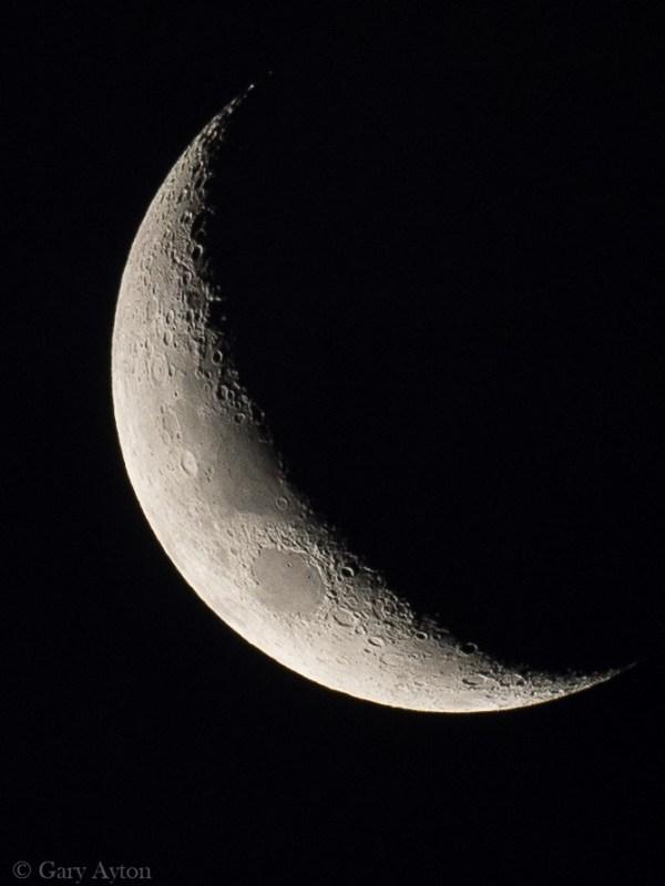 crop moon