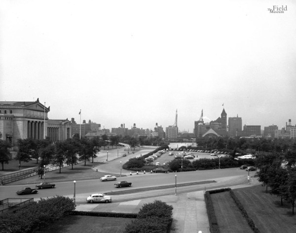 Field Museum Archives