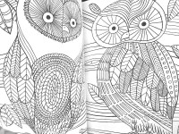 The Mindfulness Coloring Book: Anti-Stress Art...