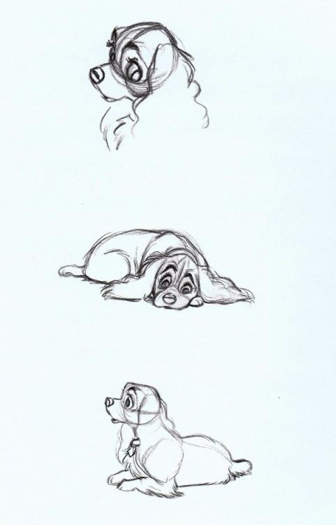 Animation.insomnio