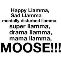 happy llama on Tumblr