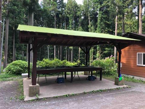 椿荘オートキャンプ場の水場