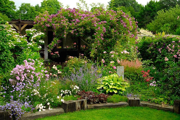 Hallson Gardens • View Topic My Garden In June