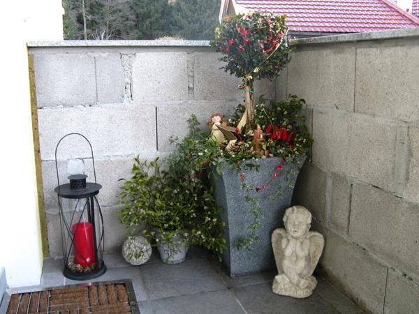 Kbelbepflanzung fr Hauseingang  trocken und schattig  Mein schner Garten Forum