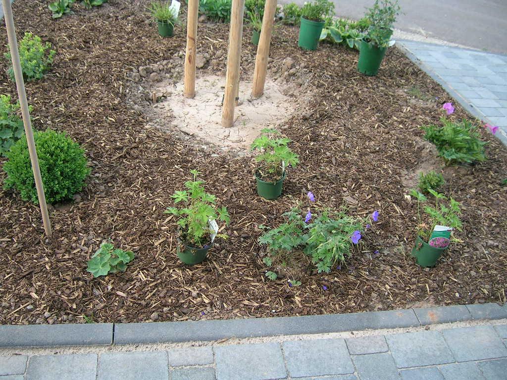 Vorgarten Planen Online Moderne Gartenarchitektur Minimalistisch