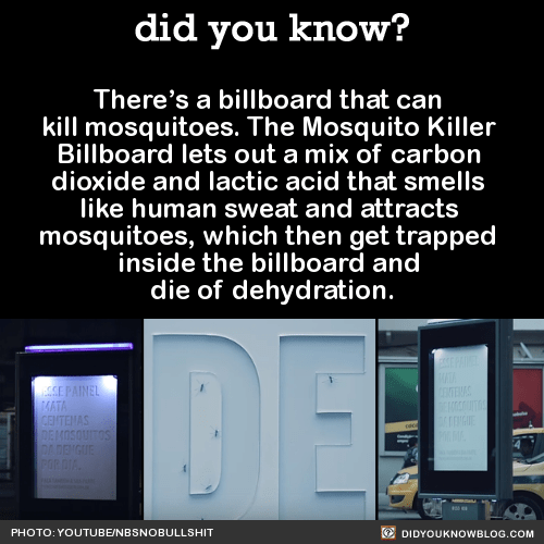 There's a billboard that can kill mosquitoes. The Mosquito Killer Billboard lets out a mix of carbon dioxide and lactic acid that smells like human sweat and attracts mosquitoes, which then get trapped inside the billboard and die of dehydration....