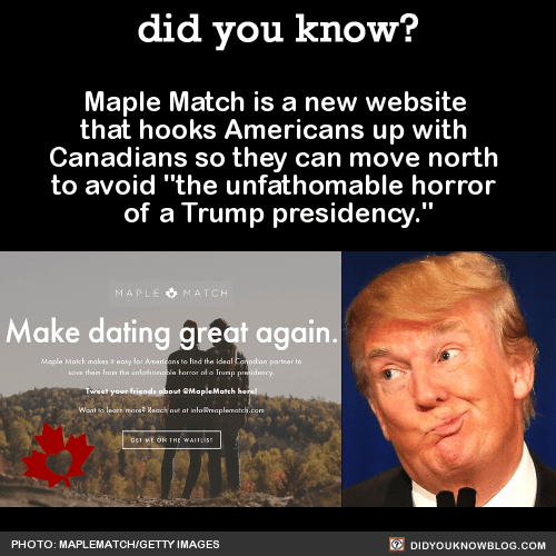 """Maple Match is a new website that hooks Americans up with Canadians so they can move north to avoid """"the unfathomable horror of a Trump presidency."""" Source Source 2 Source 3"""