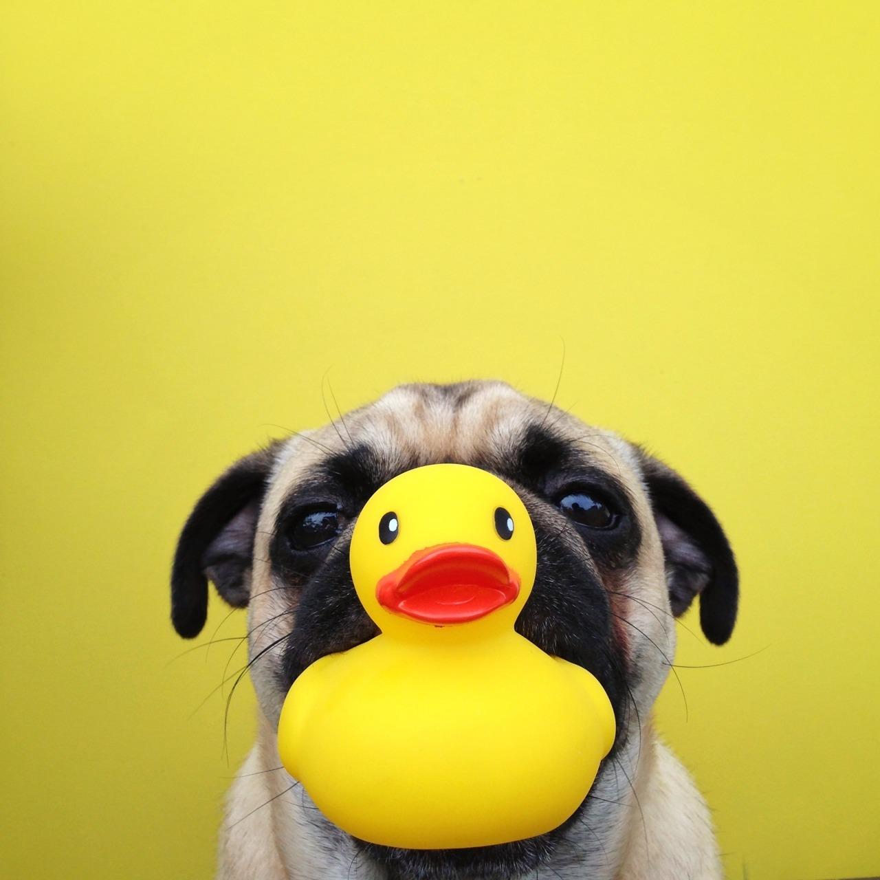 Duck face 😙