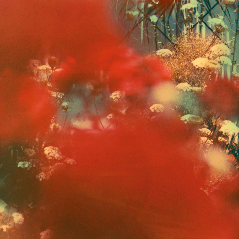 neil krug analog photography