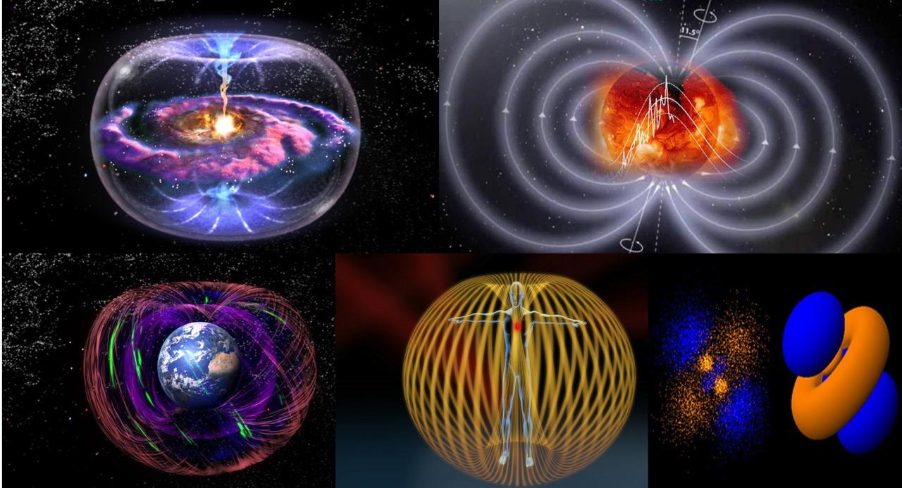 Resultado de imagem para campo eletromagnético da terra bate igual nosso coração