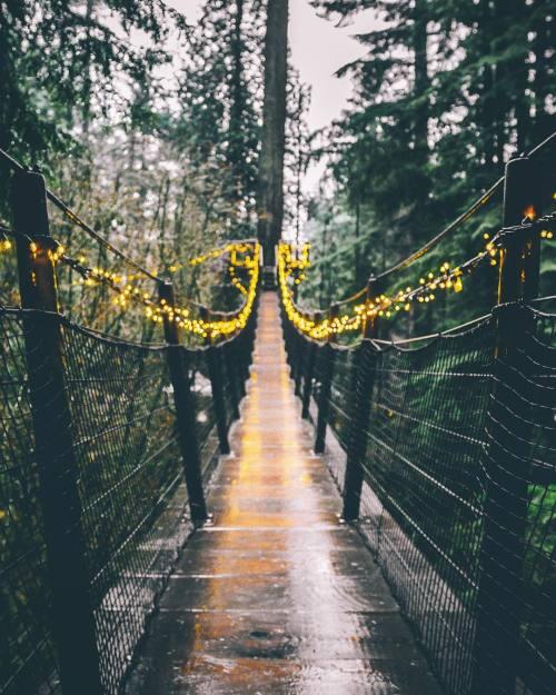 amandaricks.com/bridge-of-lights/