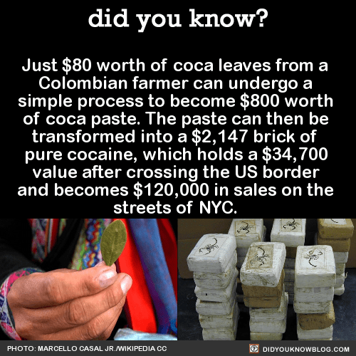 Just $80 worth of coca leaves from a Colombian farmer can undergo a simple process to become $800 worth of coca paste. The paste can then be transformed into a $2,147 brick of pure cocaine, which holds a $34,700 value after crossing the US border and...