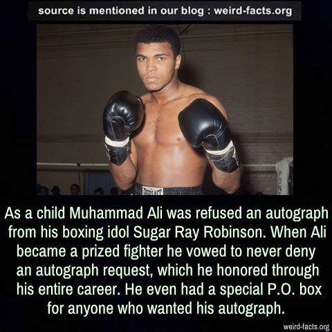 As a child Muhammad Ali was refused an autograph from his boxing idol Sugar Ray Robinson. When Ali became a prized fighter he vowed to never deny an autograph request, which he honored through his entire career. He even had a special P.O. box for...