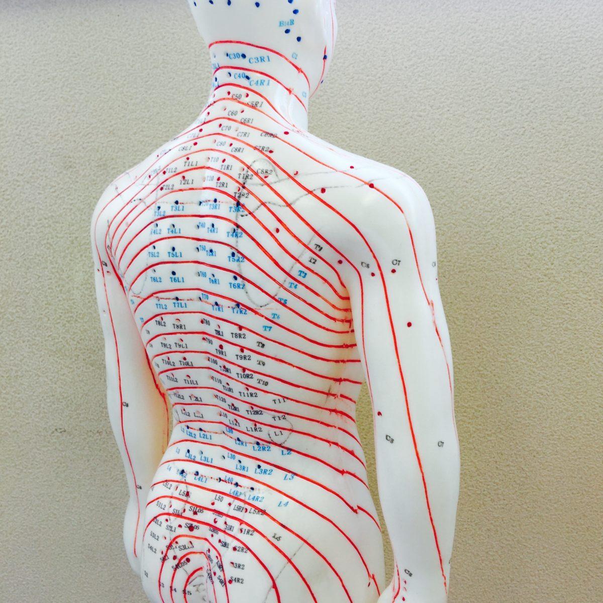 の 痛み 胸 と 背中 左