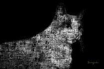serge - theme noir et blanc - 07
