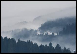 brouillard-1