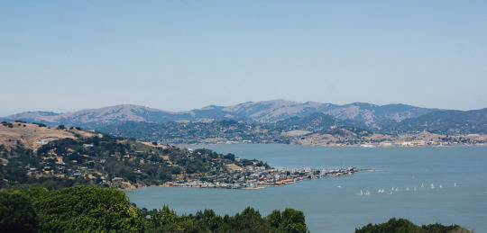 View of angel island from Tiburon
