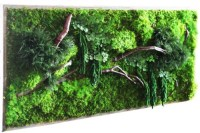 MERRY BRIDES  Eco-Friendly Moss And Fern Wall Art