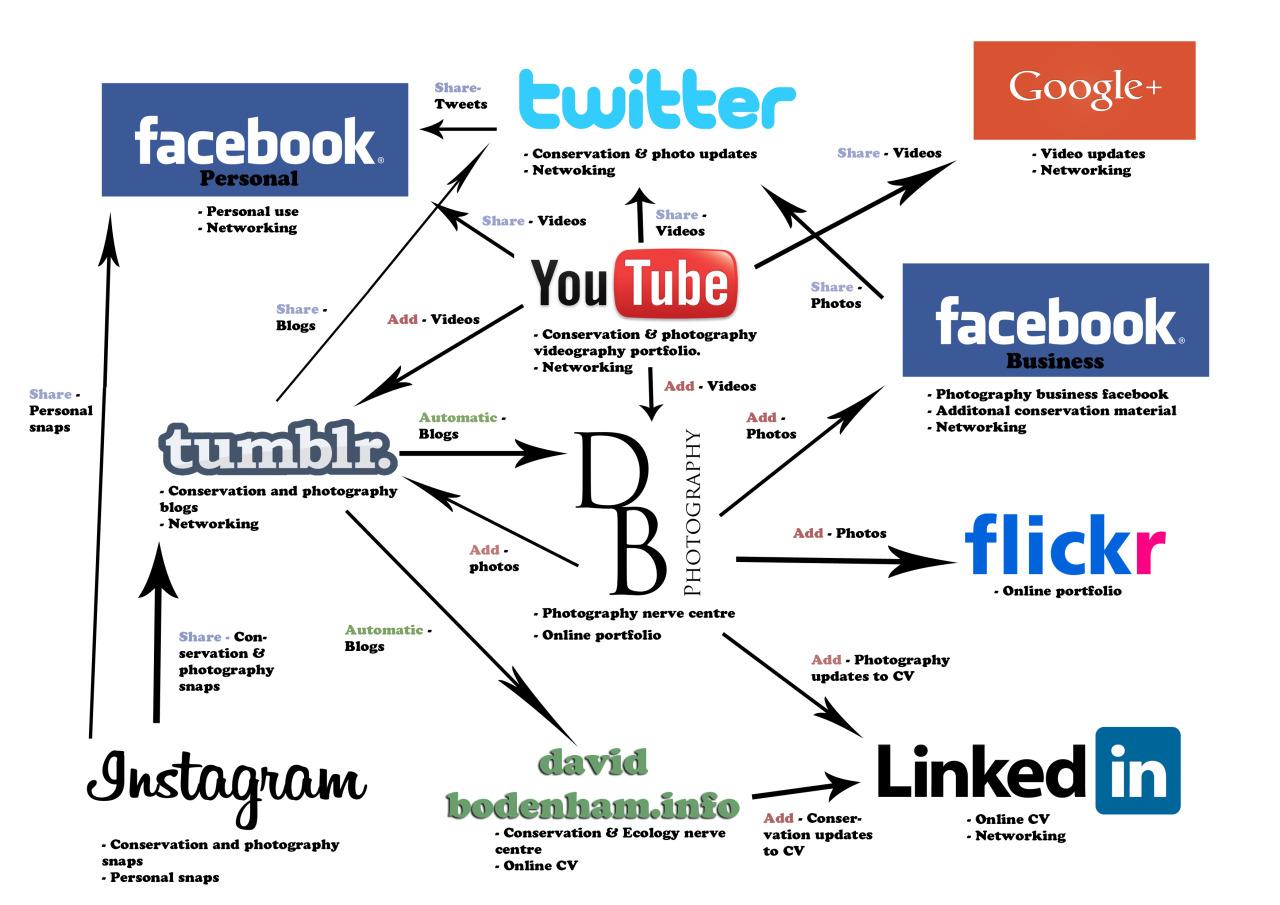 The Conservation Biologist • Social Networking Flowchart I