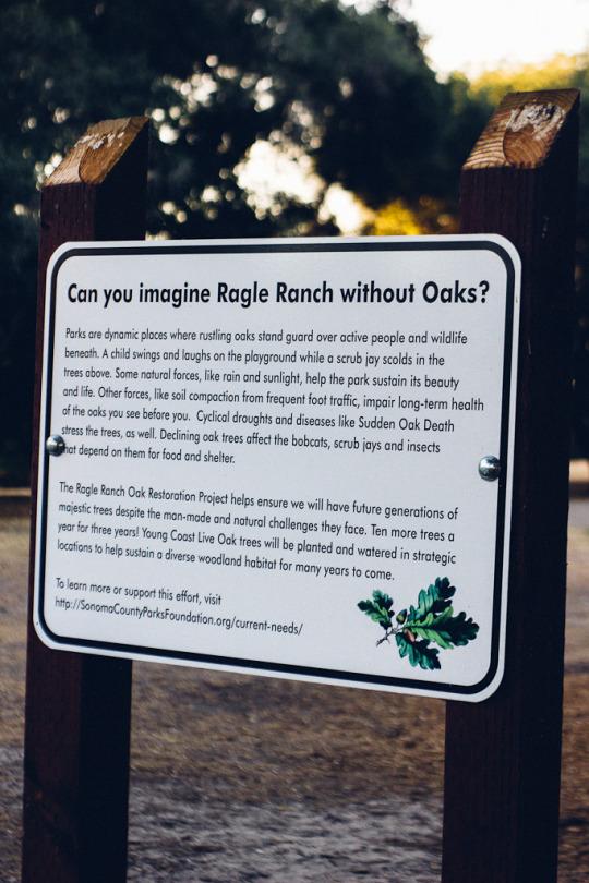 Ragle ranch park