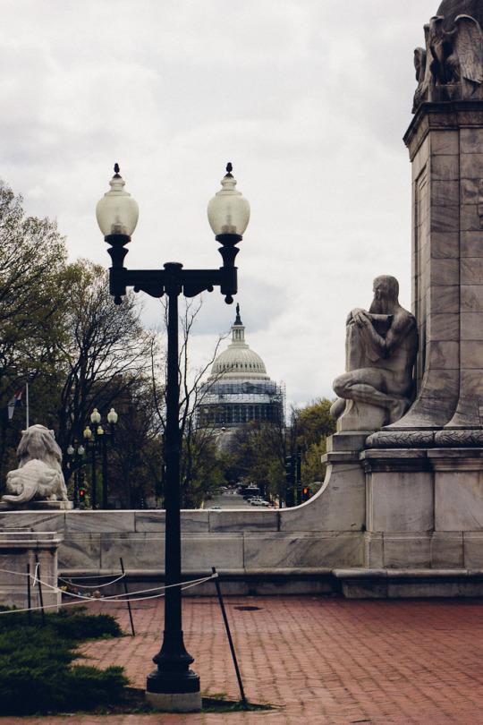 Washington DC dining guide