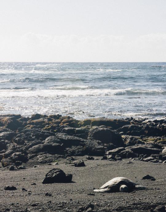 Hawaii beaches, three days in Big Island