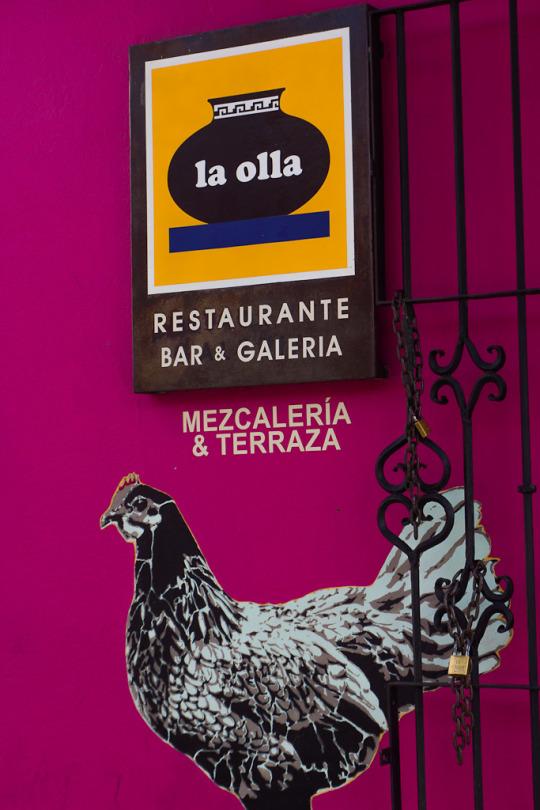 what to do in oaxaca, things to do in oaxaca, off the beaten path oaxaca, oaxaca city off the beaten track, oaxaca off the beaten path, what to do in oaxaca, where to stay in oaxaca