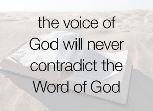 Image result for God's will never contradicts his word