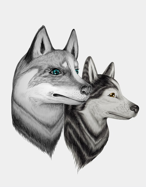 20 Tumblr Animal Drawings Pictures And Ideas On Meta Networks