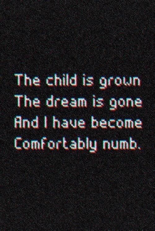 Pink Floyd Quotes Wallpaper Pink Floyd Lyrics On Tumblr