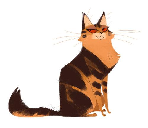 Cute Fat Cat Wallpaper Daily Cat Drawings