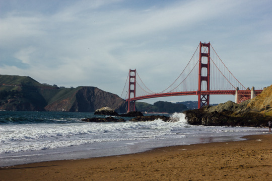 San Francisco itinerary on a budget: Helpful tips from a local on free things to do in the city