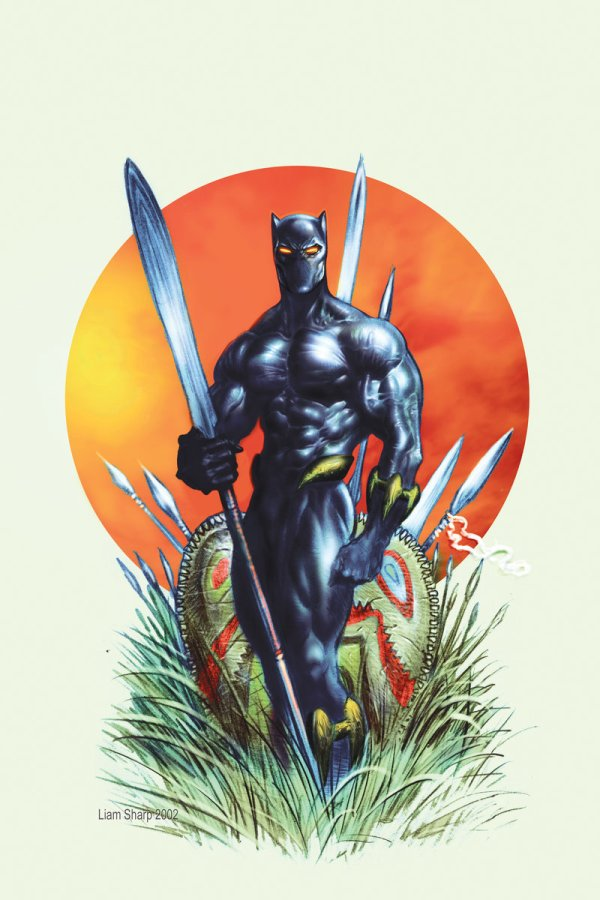 Comics Black Panther Art Character