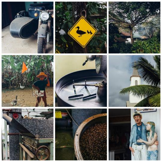Coffee tour in Kona, Big Island
