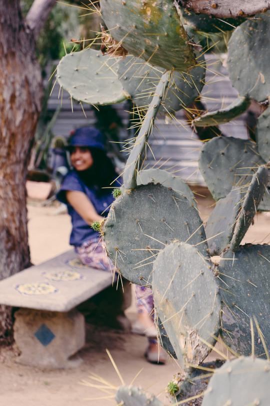 Palm Springs getaway, Spring break palm springs, spring break at palm springs, romantic weekend palm springs, weekend getaway palm springs, romantic getaway palm springs california, palm springs attractions, things to do in palm springs